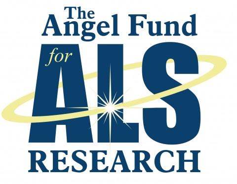 The Angel Fund….Why We're Unique